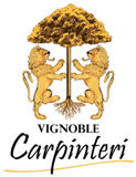 Le Vignoble Carpinteri